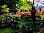 庭園201705.jpg